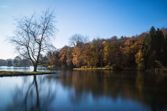 Beautiful landscape of Autumn trees and colors reflected in lake Royalty Free Stock Photo