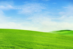 Beautiful landscape background. Peaceful landscape background shot in spring Royalty Free Stock Photography