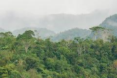 Beautiful landscape in Banaue. Philippines Stock Photos