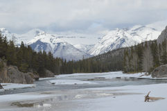 Beautiful Landscape, Banff. Beginning of spring on bow river, banff Royalty Free Stock Image