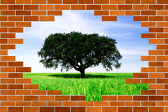 Beautiful landscape behind broken brick wall Royalty Free Stock Photo