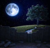 Beautiful landscape beyond the wall. A beautiful landscape beyond the wall - freedom and opportunity concept Stock Photo