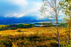 Beautiful landscape. birch tree in the foreground Stock Photos