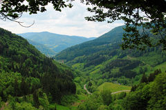 Beautiful landscape in the Black Forest in Germany. Hiking through beautiful nature and landscape in the Black Forest in Germany Stock Photos