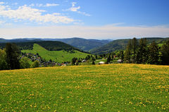 Beautiful landscape in the Black Forest in Germany. Hiking through beautiful nature and landscape in the Black Forest in Germany Stock Photo