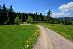 Beautiful landscape in the Black Forest in Germany. Hiking through beautiful nature and landscape in the Black Forest in Germany Royalty Free Stock Photo
