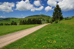 Beautiful landscape in the Black Forest in Germany. Hiking through beautiful nature and landscape in the Black Forest in Germany stock photography