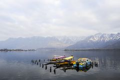 A beautiful landscape with a boat at the Dal Lake Kashmir, India during winter. A beautiful landscape at the Dal Lake Kashmir, India during winter. Tourist using Stock Images