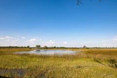 Beautiful landscape Botswana. Magnific scenery on Okavango Delta, Botswana Royalty Free Stock Photography