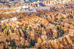 Beautiful landscape in Bryce Canyon with magnificent Stone forma Royalty Free Stock Images