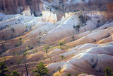 Landscapte in Bryce Canyon, Utah, USA Royalty Free Stock Photo