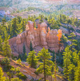 Beautiful landscape in Bryce Canyon royalty free stock photography
