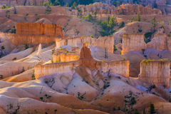 Beautiful landscape in Bryce Canyon in sunrise Stock Photo