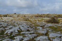 Beautiful landscape in Burren with rocky fields and blue skies. Stunning landscape in burren with rocky fields and blue skies Stock Images