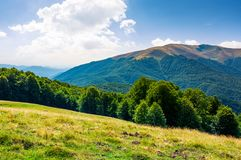 Beautiful landscape of Carpathian mountains. Forested hills and Apetska mountain in the distance in summer Stock Photos