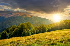 Landscape of Carpathian mountains at sunset. Beautiful landscape of Carpathian mountains at sunset. forested hills and Apetska mountain in the distance in summer Stock Photos