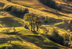 Beautiful  landscape in the Carpathian mountains. Ukraine. Beautiful autumn landscape in the Carpathian Mountains. Small house under a tree. Ukraine Royalty Free Stock Photography