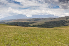Beautiful landscape characteristic for the Gran Sabana - Venezue Royalty Free Stock Photo