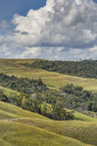 Beautiful landscape characteristic for the Gran Sabana - Venezue Royalty Free Stock Photography