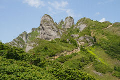 Beautiful landscape in the Ciucas Mountain, Romania. Beautiful landscape in the Ciucas Mountain Romania green rocks peak expedition trip tree Stock Photos