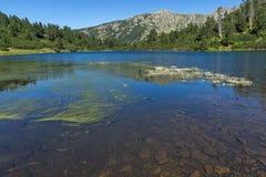 Landscape with clear waters of Fish Vasilashko lake, Pirin Mountain, Bulgaria. Beautiful landscape with clear waters of Fish Vasilashko lake, Pirin Mountain royalty free stock photos