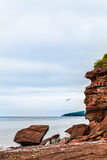 Beautiful Landscape of a Cliff and Seagull Passing by Stock Photos