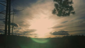 Beautiful landscape with clouds and trees stock video