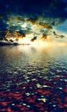 Beautiful Landscape Stock Photography