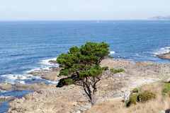 Beautiful landscape of the coast of Bayona Royalty Free Stock Images