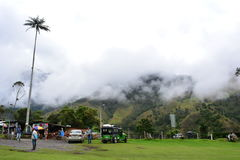 Beautiful landscape of the Cocora Valley, near to the colonial town of Salento, in Colombia. The Cocora Valley, a beautiful national park in the Eje Cafetero, an royalty free stock images