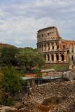 Beautiful landscape of Coliseum near the green trees under the b. Lue summer sky. Rome Stock Photos