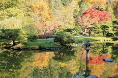 Full of beautiful fall colors at Japanese Garden, Seattle Washington. Beautiful landscape of colorful trees of fall colors at Japanese Garden, Seattle Washington Royalty Free Stock Image