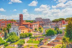 Beautiful landscape of the Colosseum in Rome- one of wonders of. The world  in the morning time. View from Roman Forum Royalty Free Stock Photography