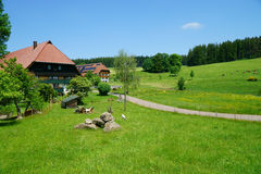 Beautiful landscape with country houses in the Black Forest Royalty Free Stock Images