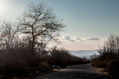 Beautiful landscape of country side road with trees in winter time at sunset. Azerbaijan, Caucasus, Sheki, Gakh, Zagatala Stock Image