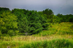 A Beautiful landscape. The country side in Washington County Stock Images