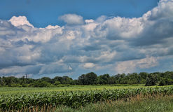 A Beautiful landscape. The country side in Washington County Royalty Free Stock Photo