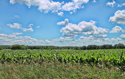 A Beautiful landscape. The country side in Washington County Stock Photography