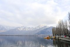 A beautiful landscape at the Dal Lake Kashmir, India during winter. Tourist using boat at the lake to travel Royalty Free Stock Photography