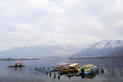A beautiful landscape at the Dal Lake Kashmir, India during winter. Tourist using boat at the lake to travel Stock Photo