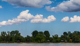 Beautiful landscape Danube Serbia. Beautiful landscape, river Danube, forest, houses Royalty Free Stock Photo