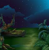 A beautiful landscape in a dark night vector illustration