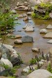 Beautiful landscape design Stock Images