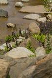 Beautiful landscape design Stock Image