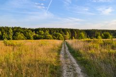 Beautiful landscape. A dirt road through the field and a forest ahead.  stock image