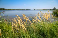 River landscape. Dnepr River. The beautiful landscape of the Dnieper River royalty free stock photo
