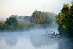 Beautiful landscape in early morning with fog Royalty Free Stock Photo