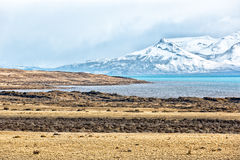 Beautiful landscape in El Calafate, Argentina. Nice fields with the Argentina Lake in the back surrounded by snowed mountains Stock Photography