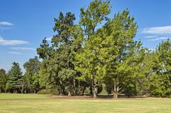 Beautiful landscape of Emmarentia park stock photos