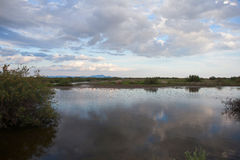 Beautiful landscape.Evros river in Greece. Royalty Free Stock Photography